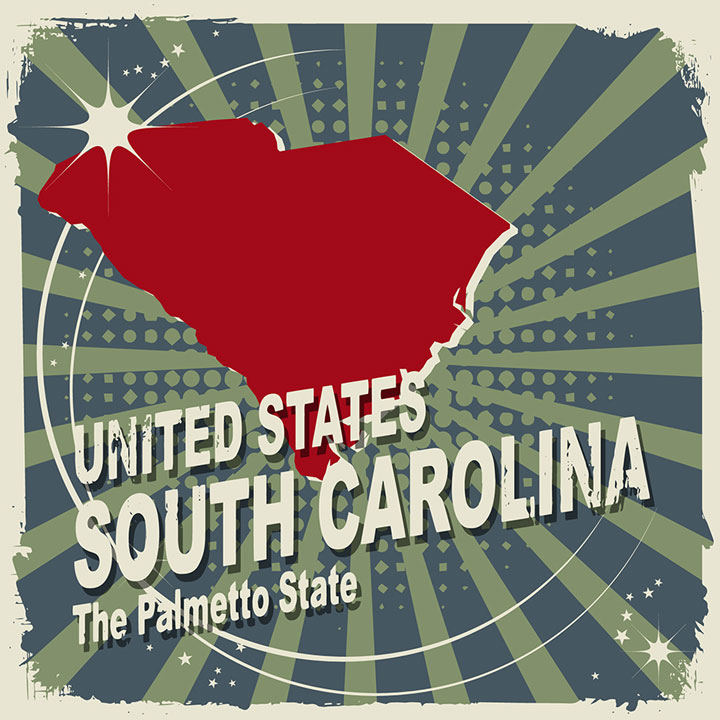 abstract south carolina map